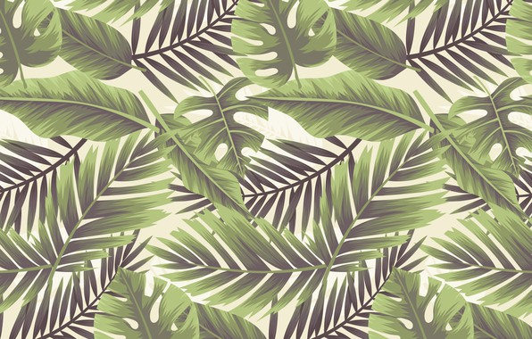 Picture texture, white background, background, Leaf, Floral