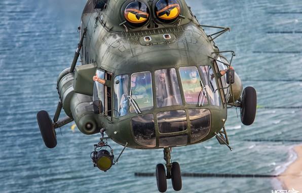 Picture Helicopter, Cabin, Spotlight, Pilot, Mi-17, Chassis, Cockpit, Gesture, OKB M. L. Mil, Polish air force, …