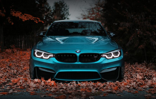 Picture BMW, Blue, Front, Autumn, Face, F80, Sight