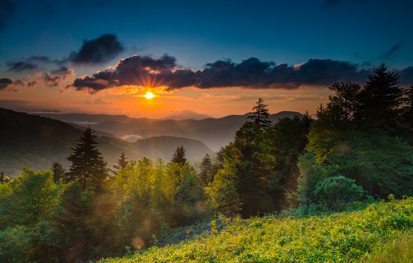 Picture dawn, morning, USA, North Carolina, mount Mitchell