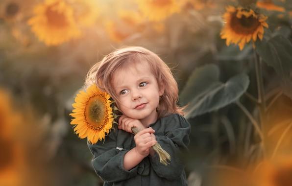 Picture sunflower, girl, baby, bokeh, Марта Козел