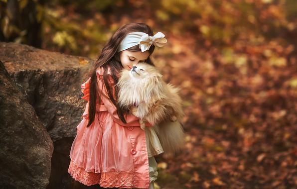 Picture autumn, mood, dog, friendship, girl, bow, friends, bokeh, Spitz, Anastasia Barmina