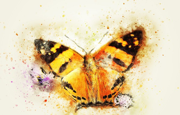 Picture macro, background, butterfly, stylized painting