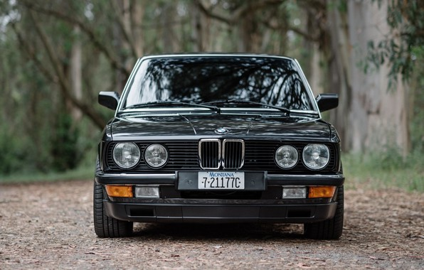 Picture BMW, E28, 5-Series, 530IS