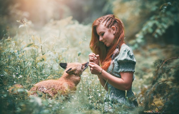 Picture girl, nature, Fox