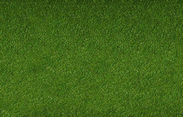 Picture Greens, Grass, Lawn