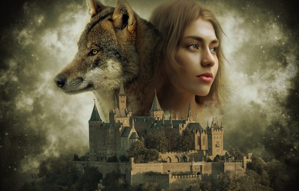Picture the sky, castle, wolf, girl art