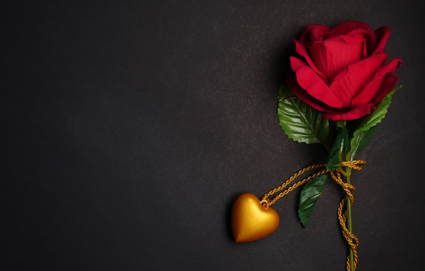 Picture flowers, gift, heart, rose, pendant, red, love, black background, red, heart, flowers, romantic, gift, roses