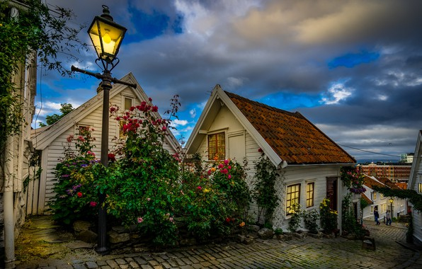 Picture flowers, the city, street, home, the evening, lighting, Norway, lights, bridge, Stavanger, municipality, plantings