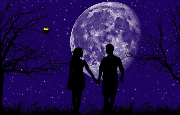 Picture stars, trees, love, owl, planet, love, magic night, a man and a woman, взвшись за …