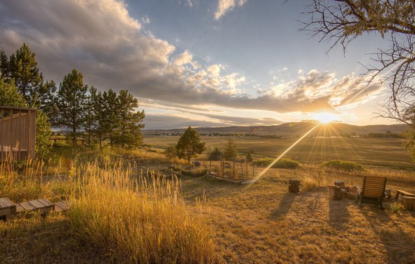 Picture the sun, landscape, nature, beauty, morning
