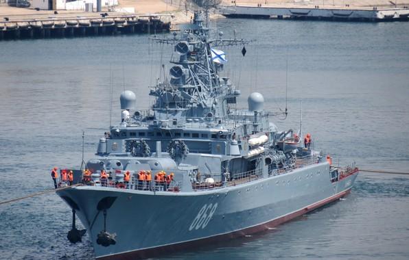 Picture ship, Sevastopol, guard, inquisitive
