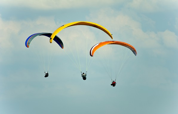 Picture photo, The sky, Sport, Three, Parachuting, skydiving
