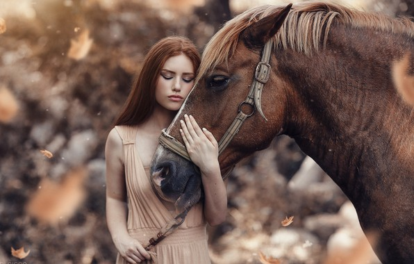 Picture look, leaves, girl, horse, Alessandro Di Cicco