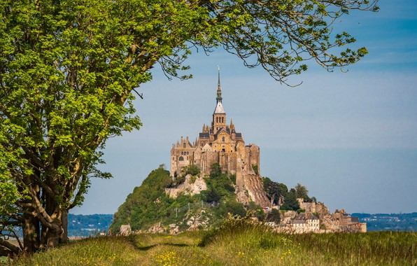 Picture trees, rock, France, fortress, France, Normandy, Normandy, Mont-Saint-Michel, Mont-Saint-Michel