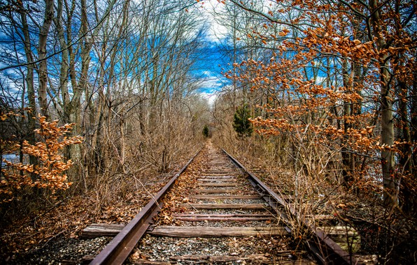 Picture nature, spring, railroad