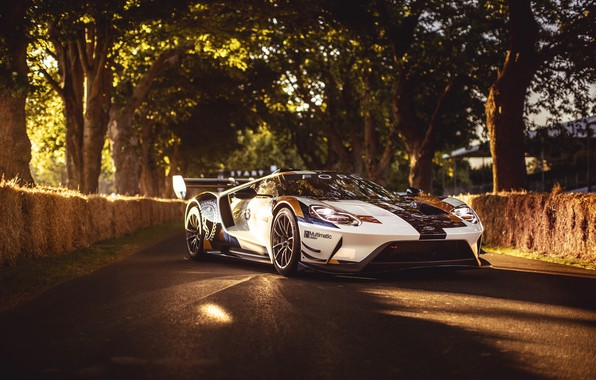 Picture machine, the sun, Ford, Trees, Ford GT, sports car, Mk II