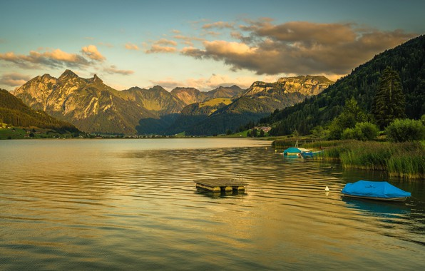 Picture forest, the sky, clouds, trees, mountains, lake, shore, boats, Switzerland, houses, Sihl