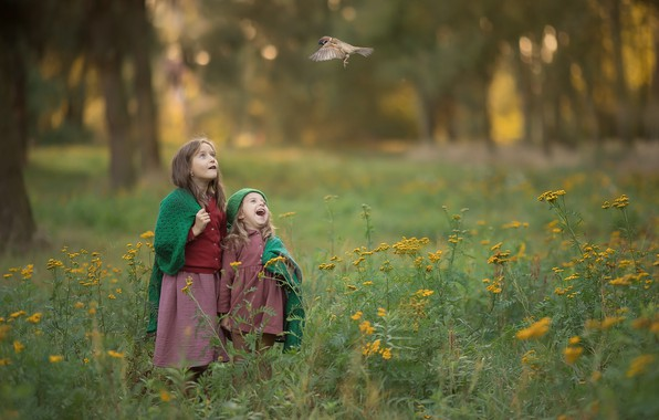 Picture grass, trees, joy, nature, children, bird, glade, girls, Sparrow, bokeh, Chudak Irena