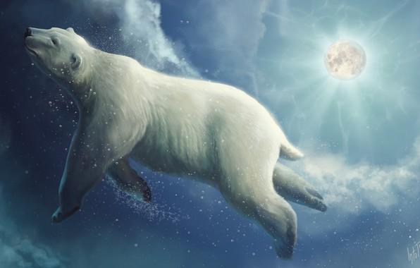 Picture Figure, The moon, Bear, Moon, Clouds, Art, Fiction, Polar bear, Bear, Polar bear, Into The ...