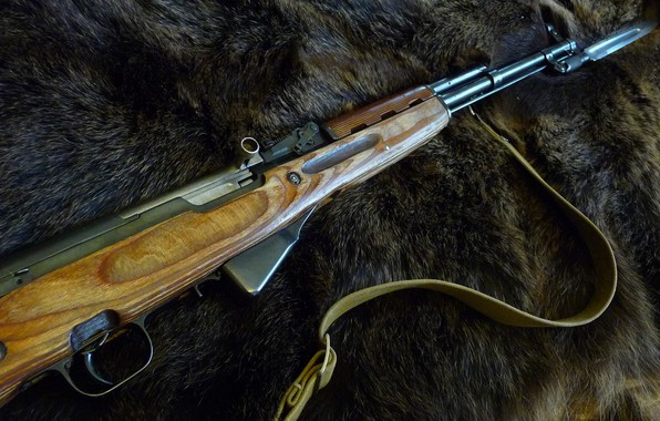 Picture weapons, the skin of a bear, SKS