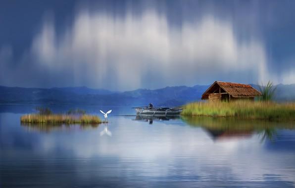 Picture landscape, nature, house, pond, the reeds, bird, boat, graphics, Heron, digital art