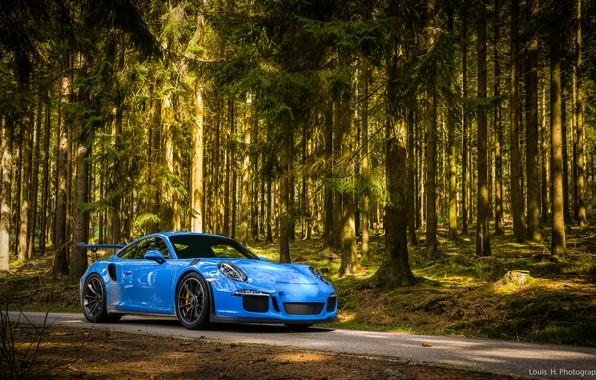 Picture 911, Porsche, Blue, Green, Evening, GT3 RS, Forest, VAG