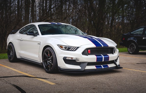 Picture Mustang, Ford, Shelby, GT350, Shelby, Ford Mustang, Ford Mustang Shelby GT350