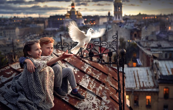 Picture children, the city, bird, boy, friendship, girl, friends, on the roof, white dove