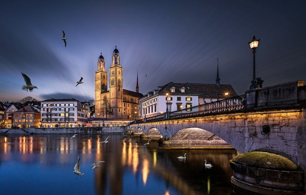 Picture birds, bridge, the city, river, building, the evening, Switzerland, lighting, lights, Church, tower, swans, Zurich