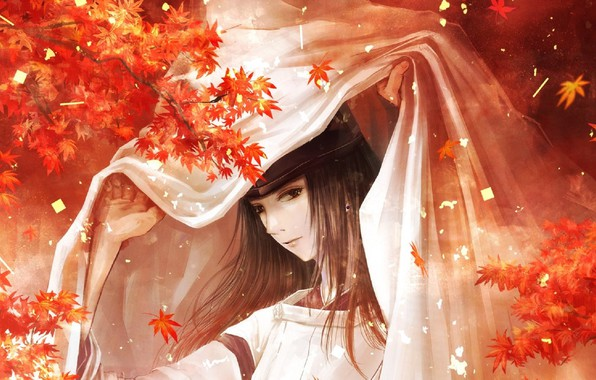 Picture hat, blanket, long hair, Japanese clothing, maple leaves, priest, Fujiwara no Sai, Hikaru no Go, …