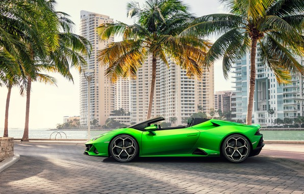 Picture machine, palm trees, building, Lamborghini, sports car, Spyder, Evo, Huracan