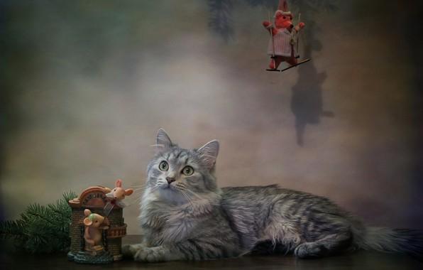 Picture cat, cat, animal, new year, spruce, branch, mouse, figures, Kovaleva Svetlana, Svetlana Kovaleva