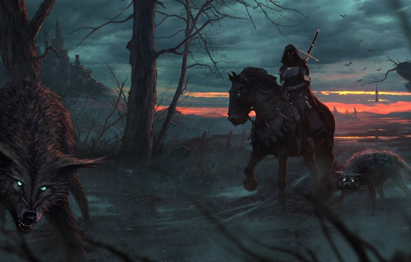 Picture road, forest, girl, trees, night, predators, fantasy, art, hood, wolves, art