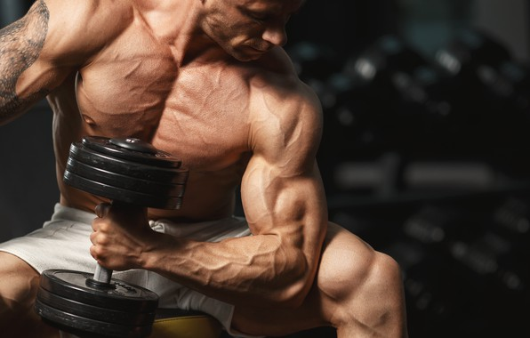 Picture pose, tattoo, muscle, muscle, pose, dumbbells, biceps, gym, bodybuilder, dumbbells, bodybuilder, gym