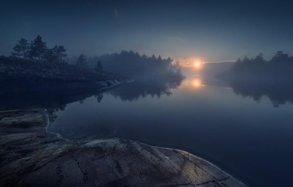 Picture forest, lake, stones, forest, lake, stones, Ladoga, Ladoga, Olga Rudchenko