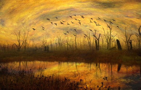 Picture autumn, the sky, grass, water, clouds, light, trees, flight, landscape, sunset, birds, orange, branches, yellow, …