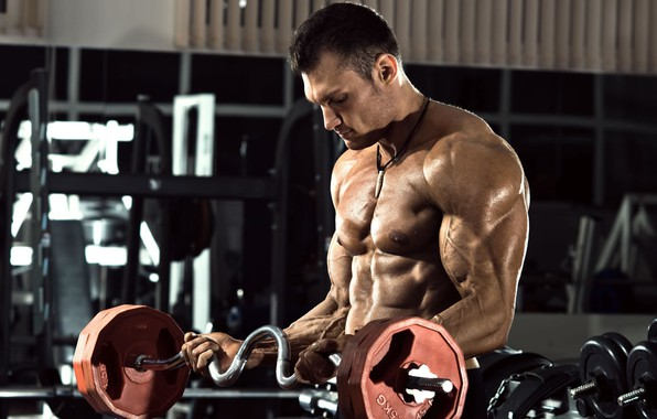 Picture pose, muscle, muscle, rod, press, athlete, gym, bodybuilder, abs, Gym, bodybuilder, gym