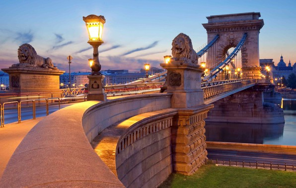 Picture road, bridge, river, the evening, lights, light, lions, statues, river, evening, Hungary, Budapest