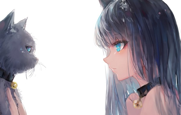 Picture white background, collar, blue eyes, black cat, ears, tete-a-tete, art, bangs, in profile, bell, eye …