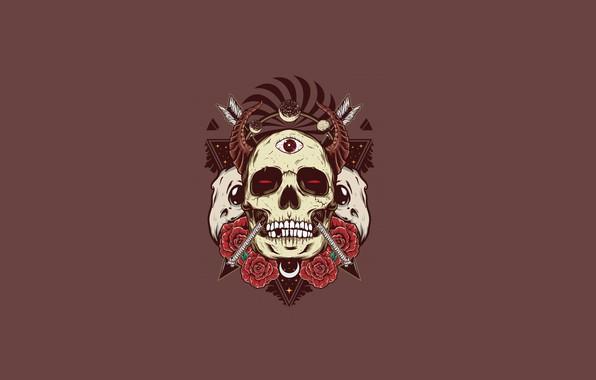 Picture skull, roses, horns, skull, arrows