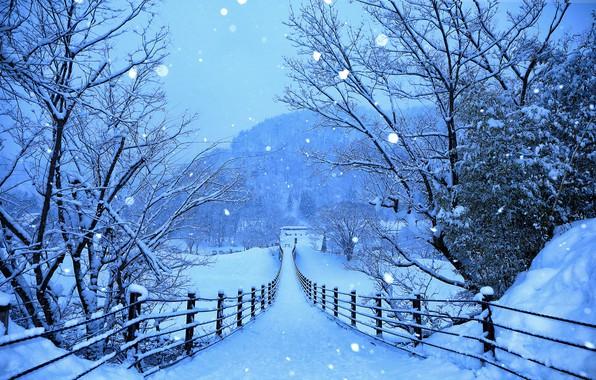 Picture winter, forest, snow, trees, mountains, snowflakes, bridge, blue, Japan, Shirakawa-go, Gokayama