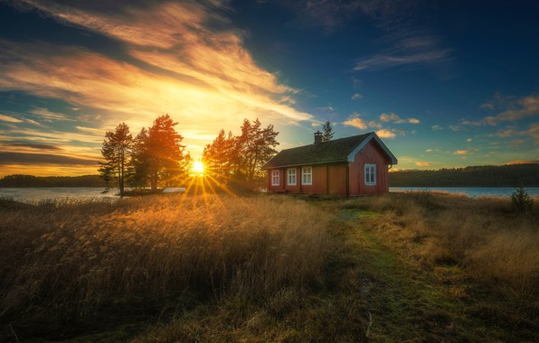 Picture forest, the sky, the sun, rays, lake, house, dawn, Norway, Norway, Ringerike