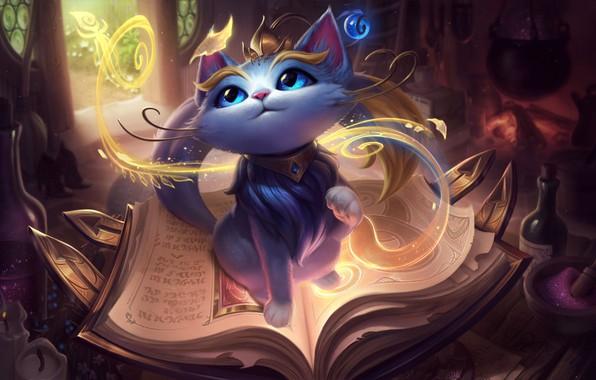 Picture fantasy, game, magic, cat, blue eyes, League of Legends, book, digital art, artwork, fantasy art, …