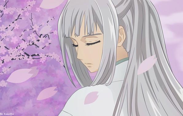 Picture petals, shoulder, art, vampire knight, knight-vampire, closed eyes, thoroughbred, matsuri hino, long white hair, the …