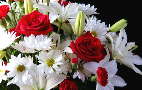 Picture flowers, background, Lily, roses, bouquet
