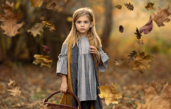 Picture autumn, leaves, girl, basket