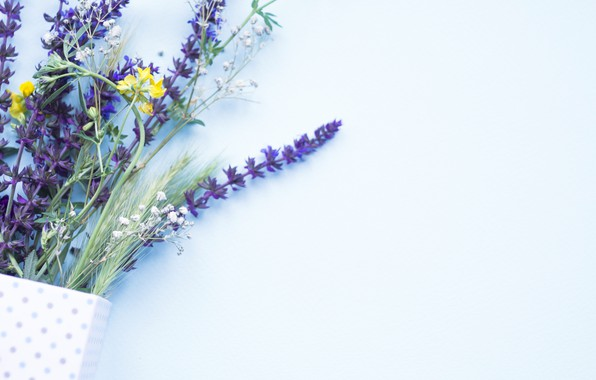 Picture summer, flowers, bouquet, field, flowers