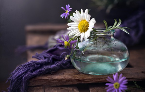 Picture flowers, background, Bank