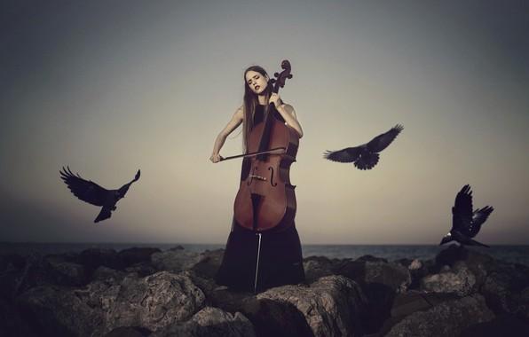 Picture girl, birds, cello